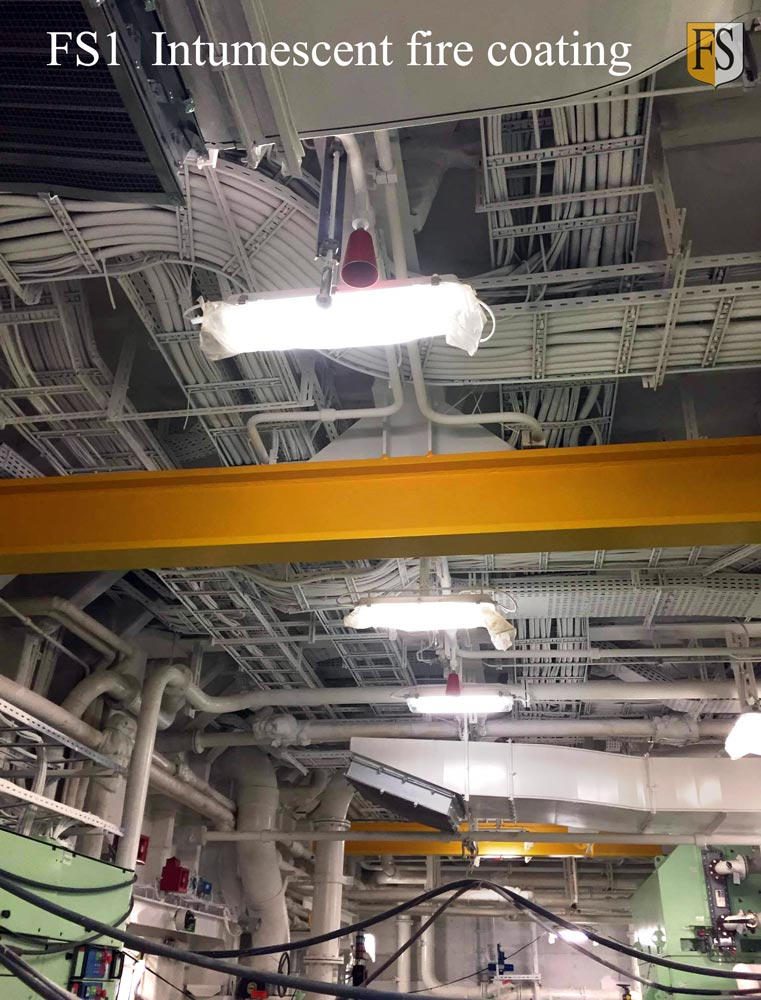Intumescent fire paint is used to protect electical cables on cruise ships